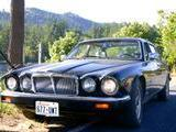 1984 Jaguar XJ6 Series III