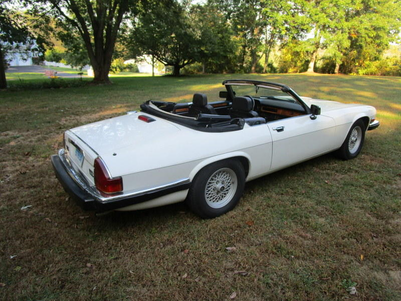 1989 Jaguar XJ-S (SAJNV4840KC154278) : Registry : The ...